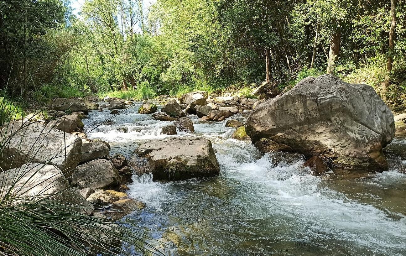 rivière éco mince