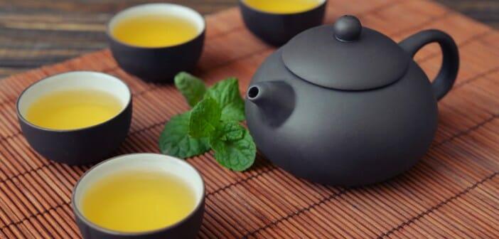 Le thé à la menthe aide-t-il à perdre du poids chimie derrière la perte de poids