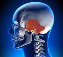 Quels sont les symptômes de la spondylarthrite ? - VIDAL