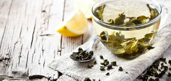Le thé à la menthe aide-t-il à perdre du poids brûleur de graisse ke fayde