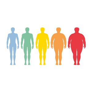 Ce qui se passe dans mon corps quand je perds du poids