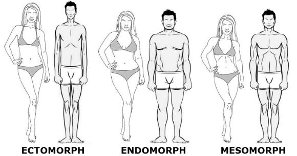 Endomorphe : Connaissez-vous le régime endomorphe ?