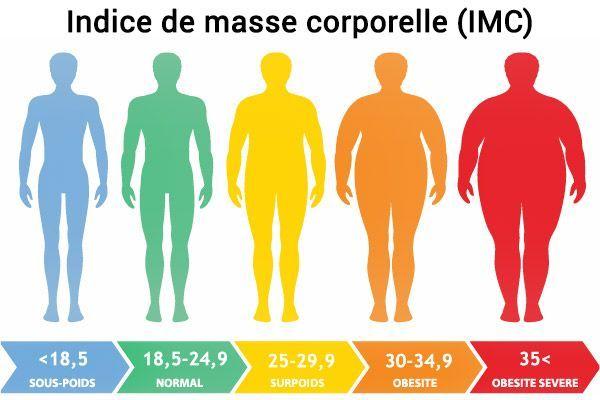 Calculer votre IMC ? Utilisez notre calculateur d'IMC   WW France