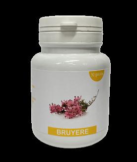 Cardio training - Les Bruyères