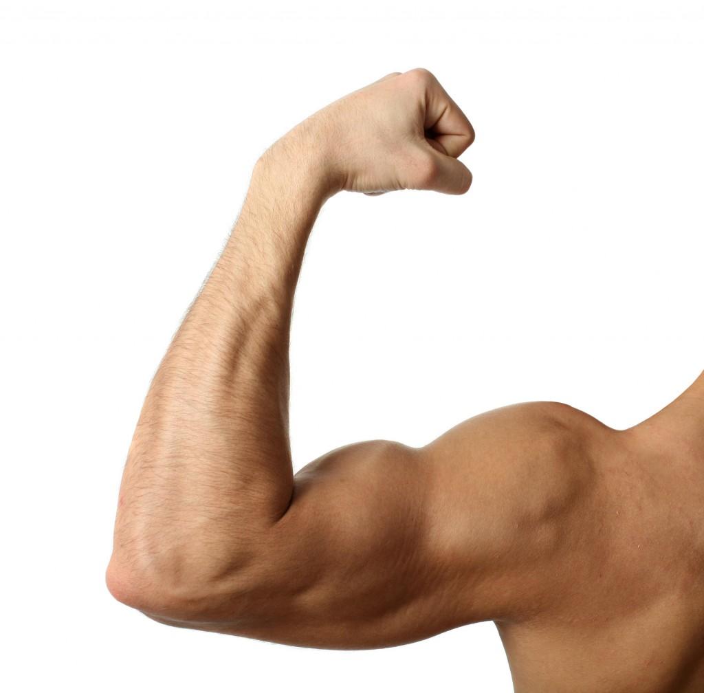 manger plus perdre de la graisse corporelle supplément brûleur de graisse naturel