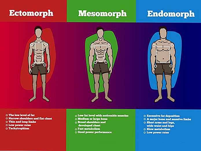 Quel est le régime endomorphe? Perdre du poids en fonction du type de corps – Minceur Pro