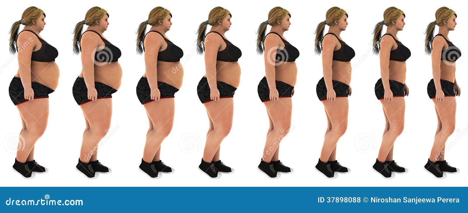 tiré pour la perte de graisse