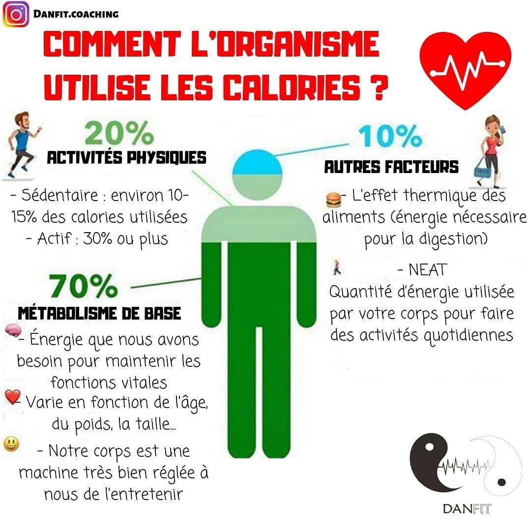 améliorer le métabolisme perdre du poids