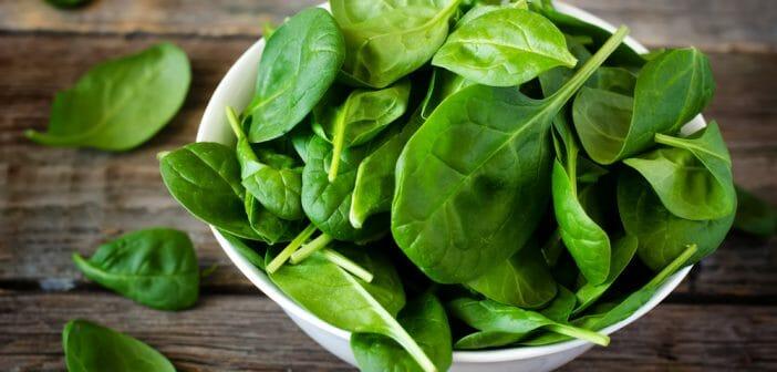 Légumes brûleurs de graisses : notre sélection des plus efficaces