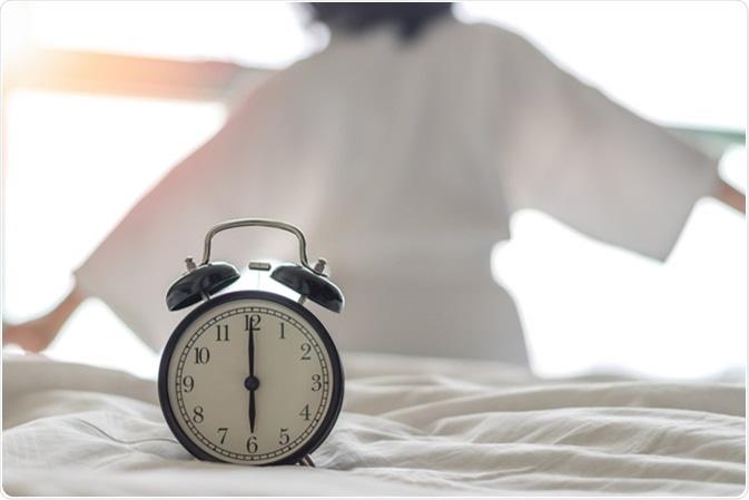 rythme circadien et perte de poids
