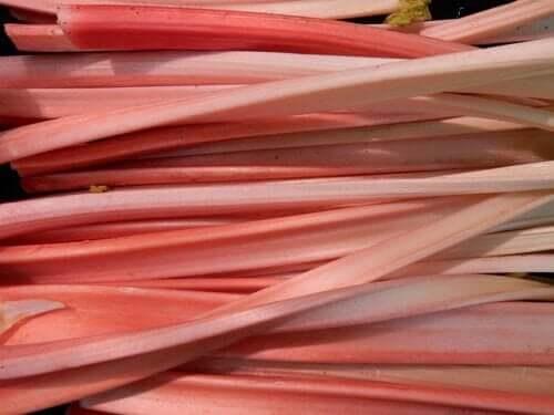 Poudre d'extraction de rhbarbe naturelle, extrait de sérum naturel, 50 ml