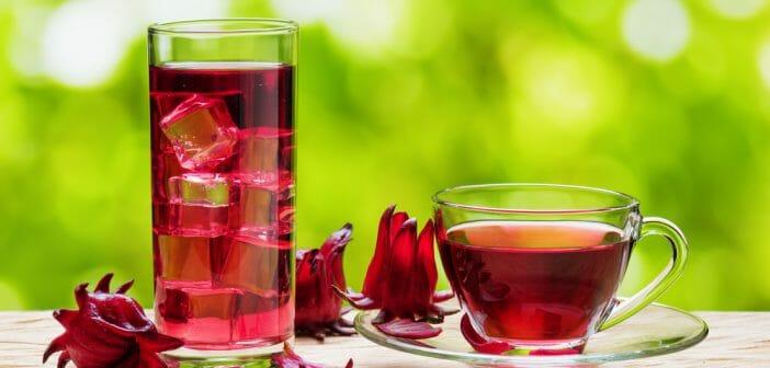 Quel thé vert pour maigrir rapidement ?