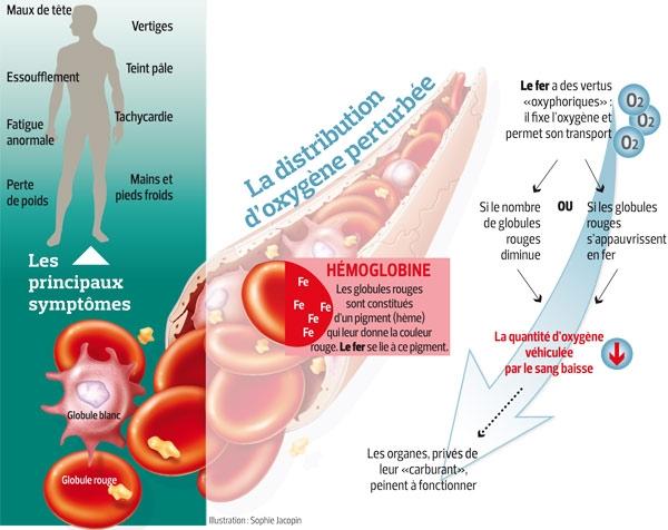 anémie perte de poids