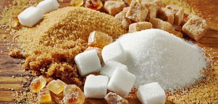 Apport journalier en sucre : quelle quantité à respecter ?