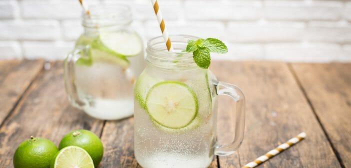 Limes : Nutrition, avantages, utilisations et effets secondaires