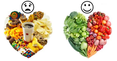 manger en une journée pour perdre du poids