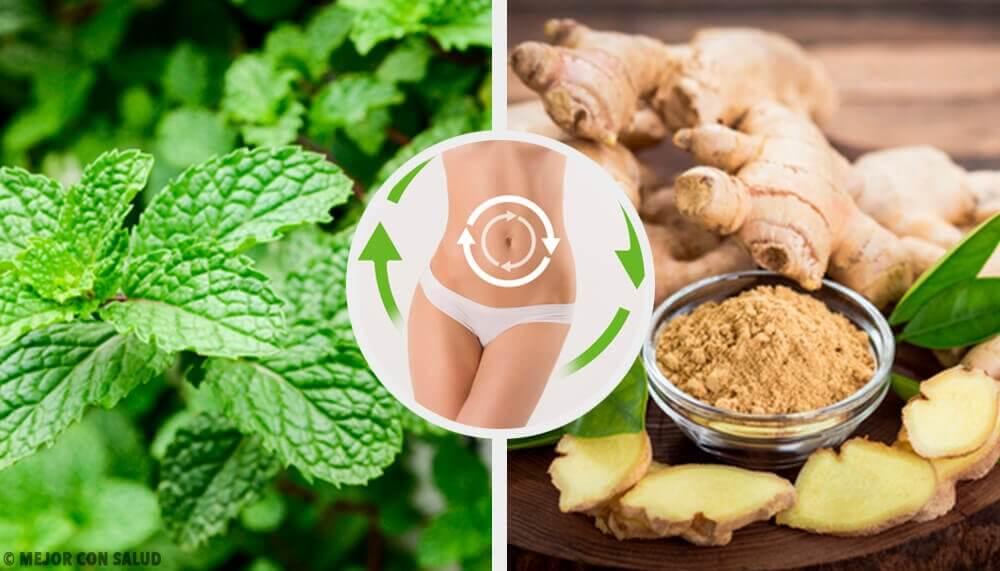 Thé à la menthe, un excellent allié pour votre régime - Améliore ta Santé