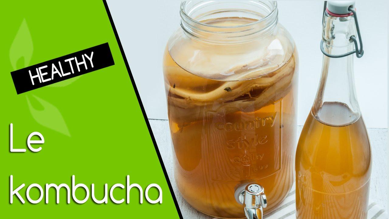 meilleur thé kombucha pour perdre du poids meilleur pour brûler la graisse du ventre