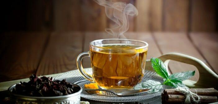 Obésité: Boire du thé noir favoriserait la perte de poids