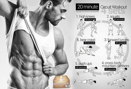 body building exercices