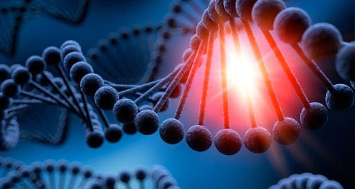 Perte de poids : la fable du régime ADN