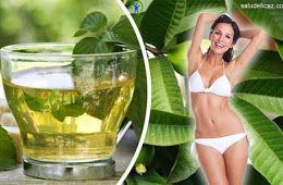 Comment préparer le thé amincissant à la feuille de goyave ?
