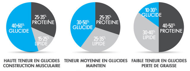 rapport macro pour la perte de graisse masculine