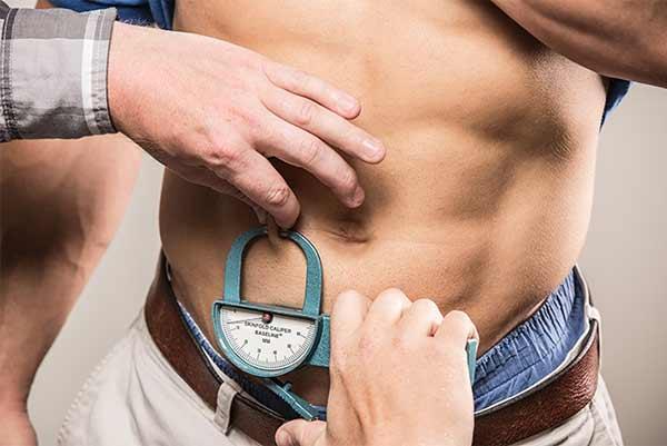 Analyses de gras et de muscles