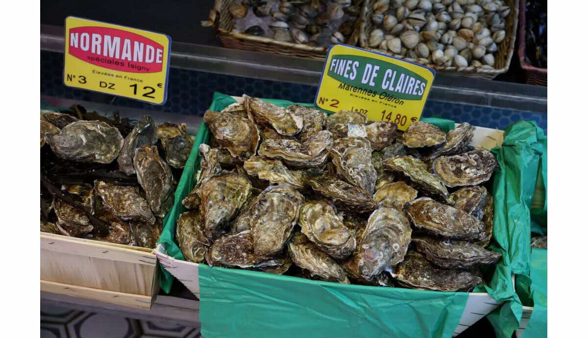 huîtres pour perdre du poids moyen le plus sain de perdre du gras rapidement